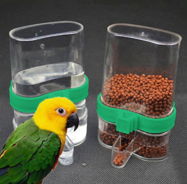 supplies for pet bird